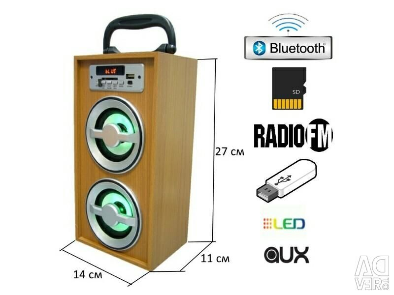 Portable Bluetooth speaker with flash drive and radio