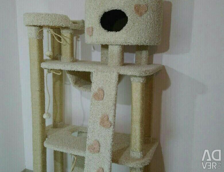 Complex for cats with a kittens and a house