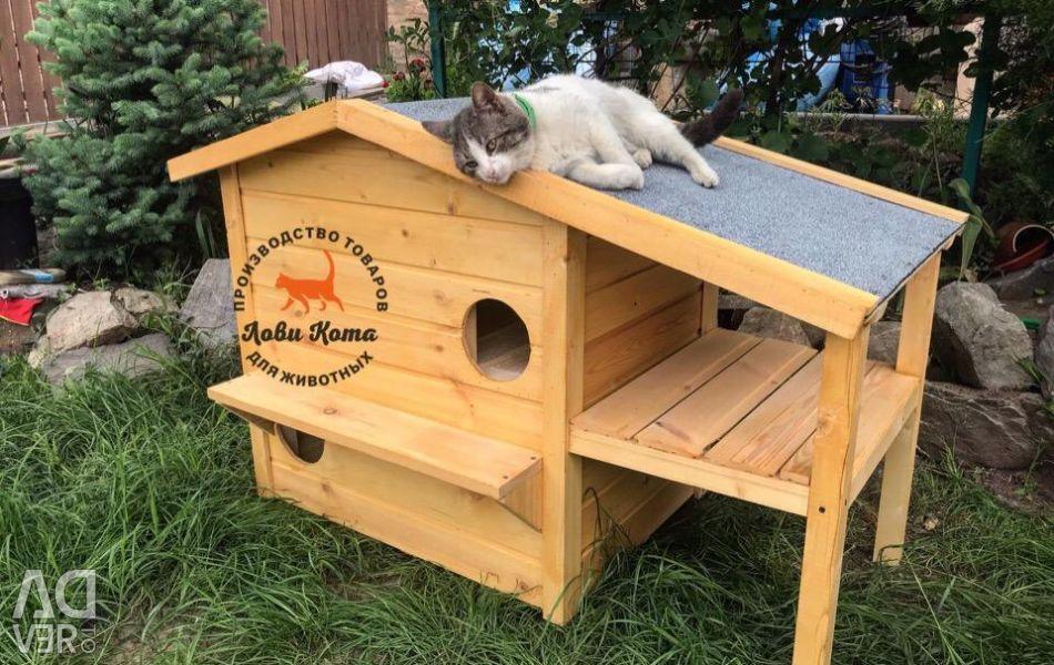 Bir kedi ya da kedi için ev