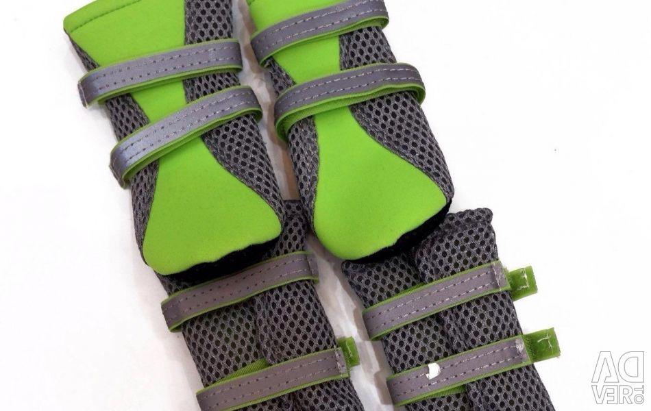 Socks for the dog green phosphorus