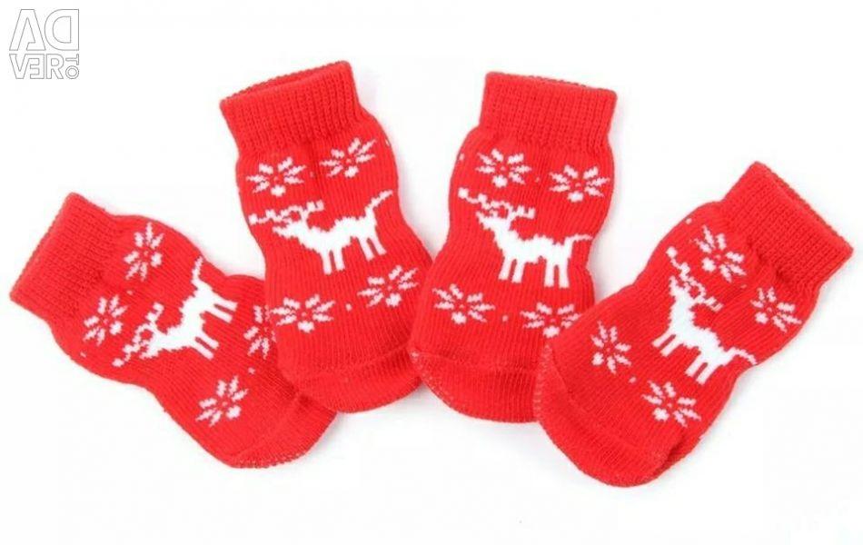 New socks for animals