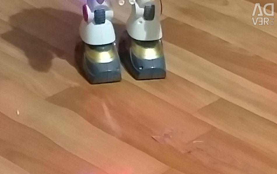 Robotul