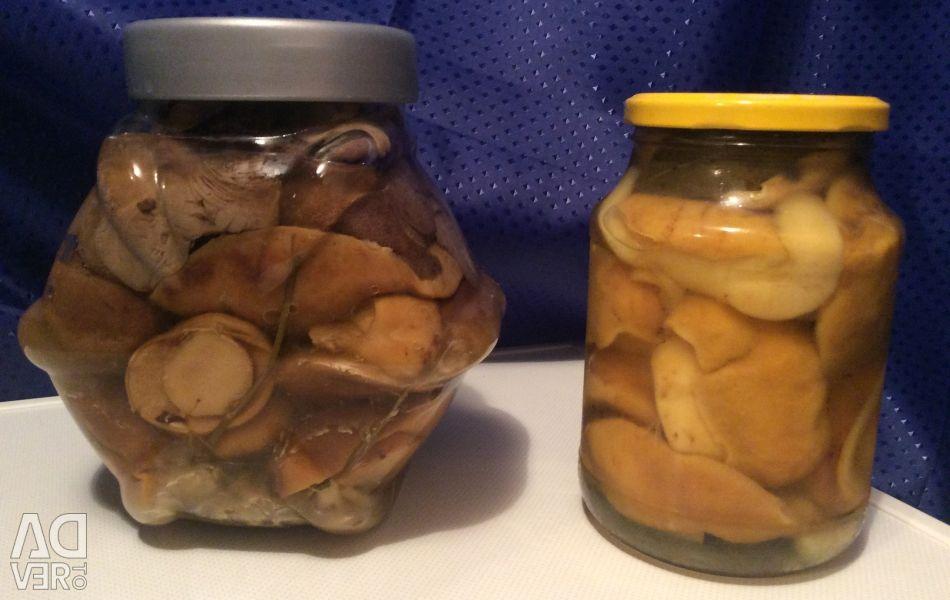 Mantar, tuzlanmış ve salamura beyaz, mantar, bal agarics