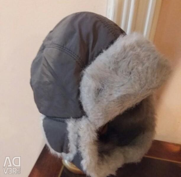Winter hat ushanka for a boy