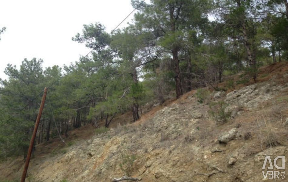 Seven Fields and Plots in Moniatis, Limassol