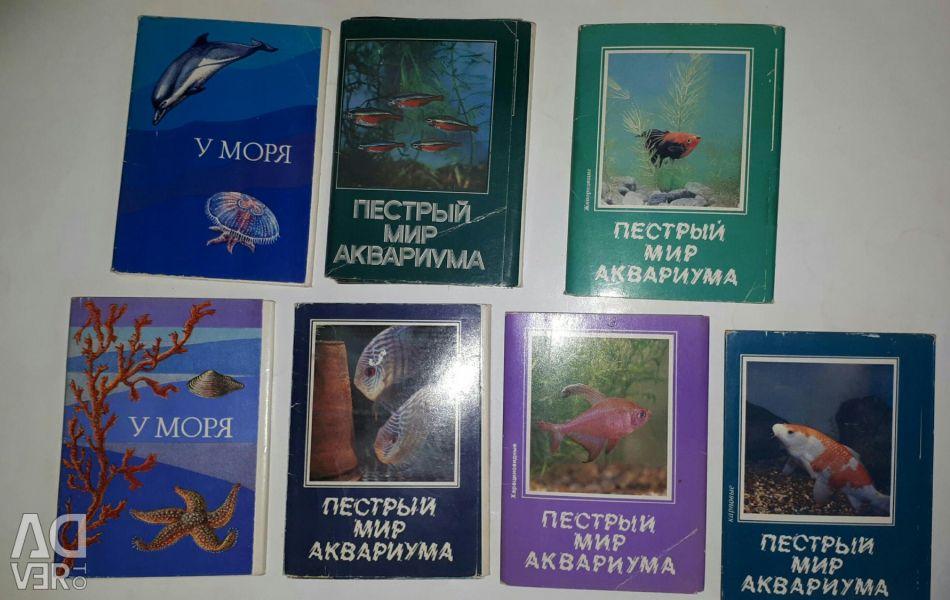 Akvaryum balığı Deniz yoluyla. kart setleri