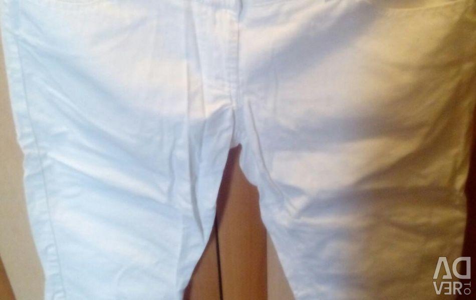 White breeches