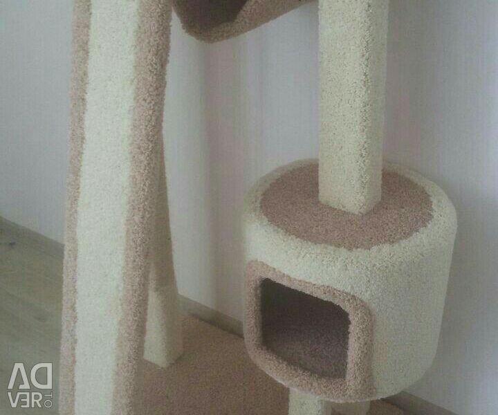 Zgârierea complexă cu pisica de pisică