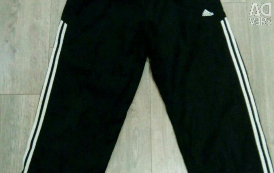 Adidas Pantolon