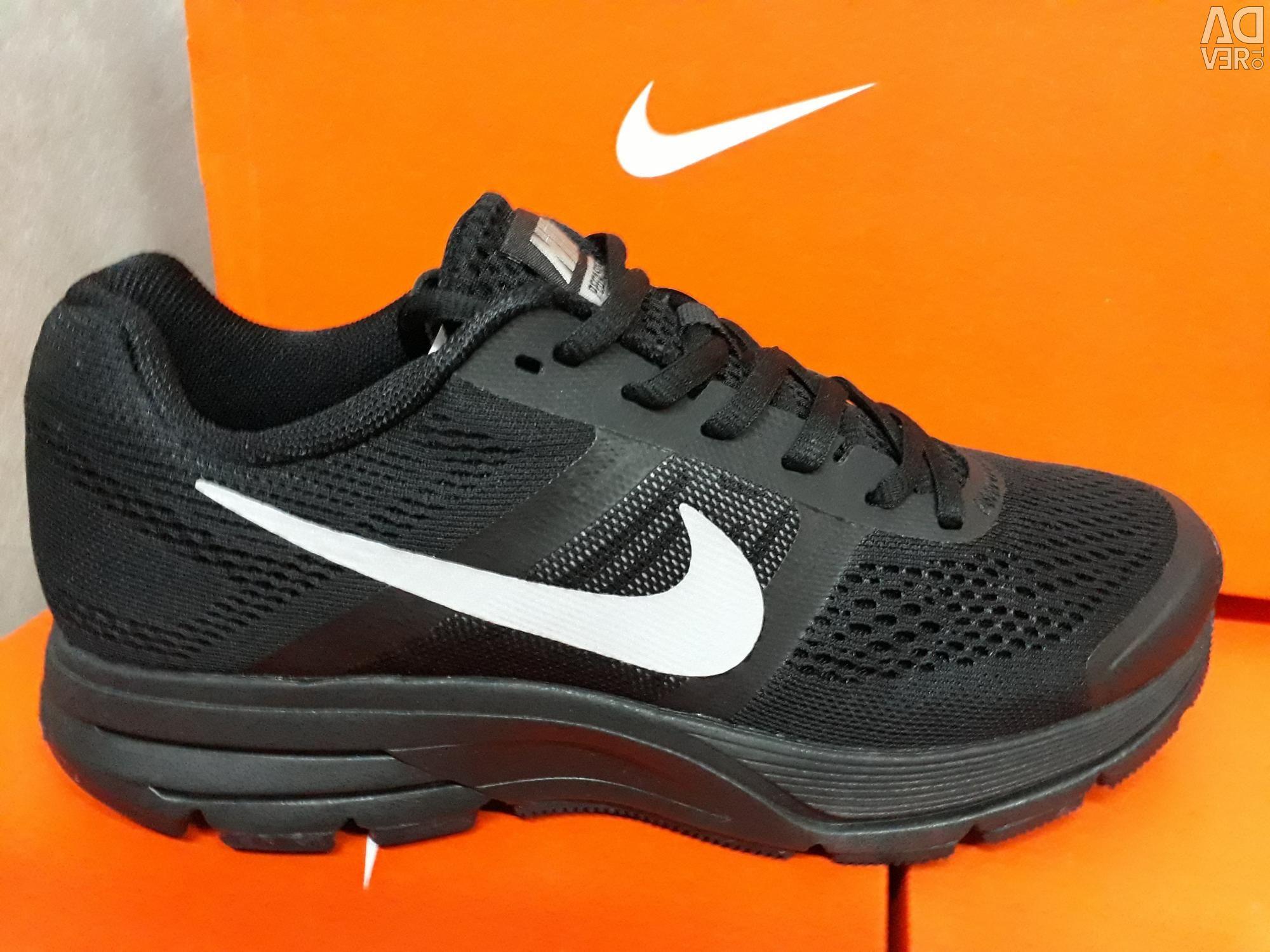 Sneakers for men Nike PEGASUS 30.Original